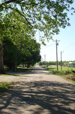 Louisiana Country Road